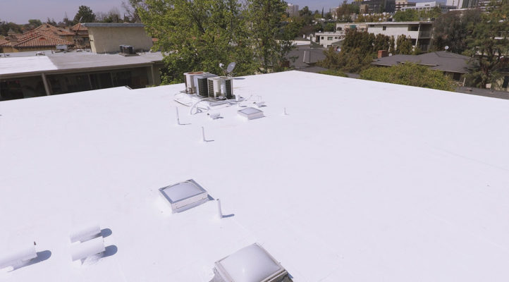 flat roof with skylights